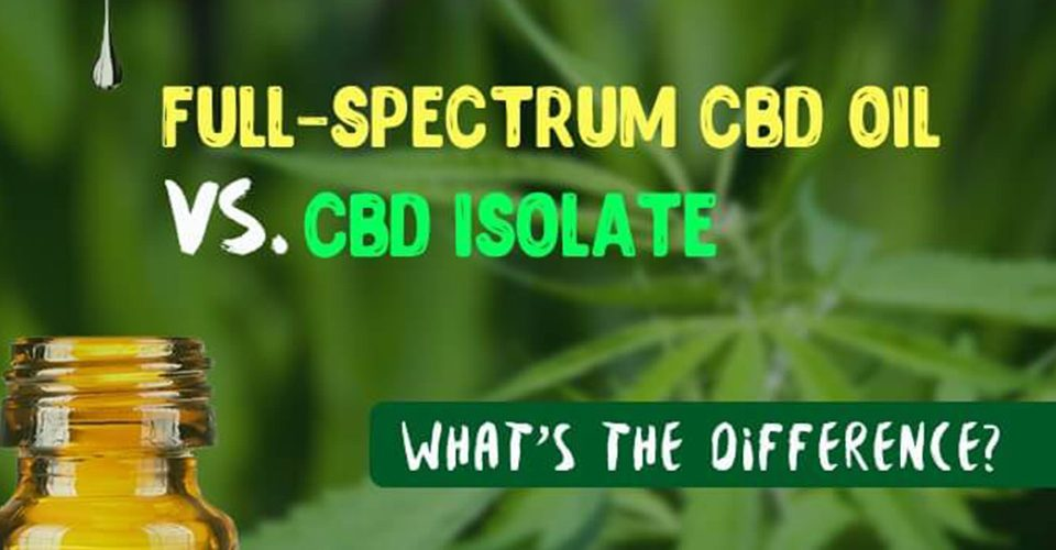 Isolate or Whole Plant CBD? 3